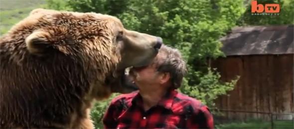u celjustima medveda