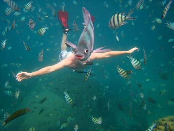underwater-fish-photobomb-resizecrop--