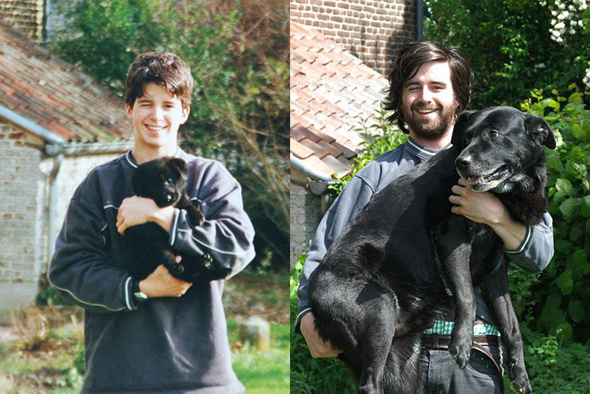 pets-before-after-7
