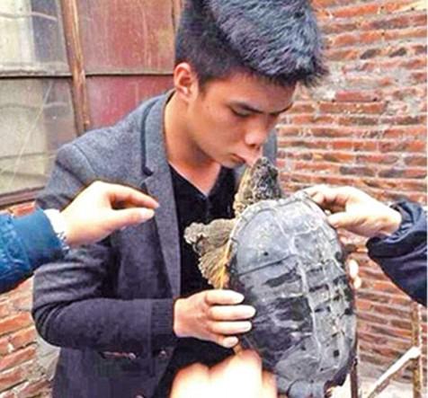 kiss-turtle