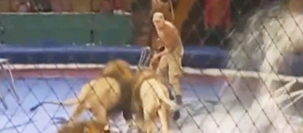 cirkus-590