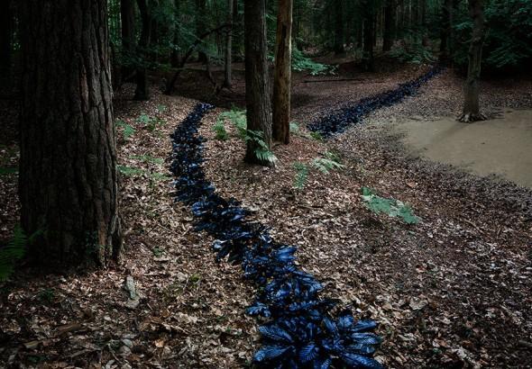 surreal-forest-photograhy-ellie-davis-11__880