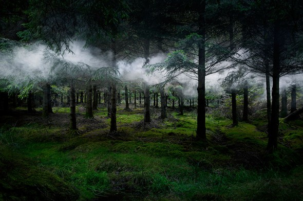 surreal-forest-photograhy-ellie-davis-13__880
