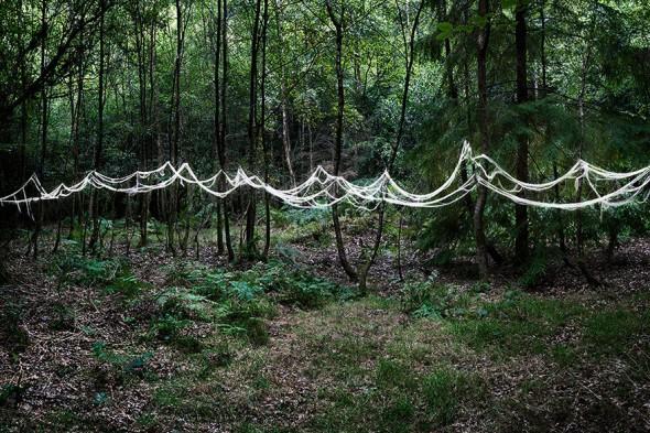 surreal-forest-photograhy-ellie-davis-18__880