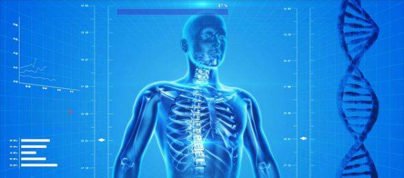 ljudsko-telo-dobro-je-znati-radio-pingvin